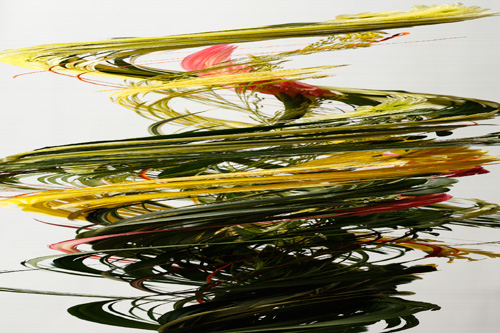 Slit scan photo of flowers rotated on a turntable